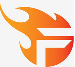 logo-team-flash